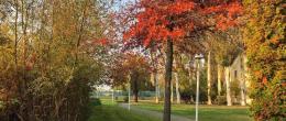 Kedvezményes őszi hétköznapok